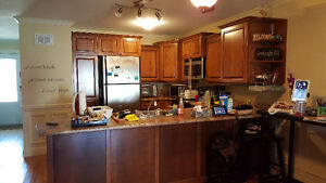 Entire Kitchen and Bathroom Cupboards and Countertops