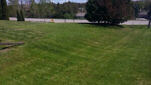 KAWARTHA CREATIONS: Lawn Care / Fall Clean Up Peterborough Peterborough Area image 4