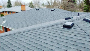 Roofing and Roof Repairs 289-933-0377