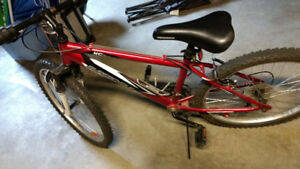 Supercycle mountain bike and 2 used skateboards