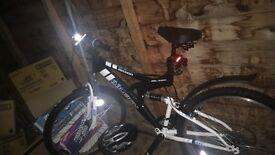 Raleigh adults bike