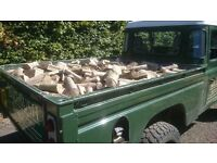 Level Truck Load of Logs and 3 X Kindling £110