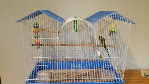 2 Budgies plus cage