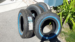 Article Claw winter tires
