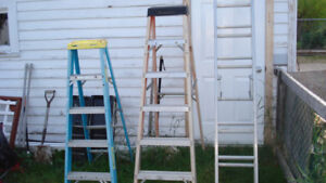 Extension and Step Ladder
