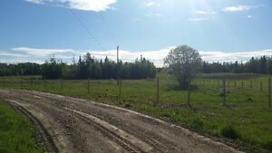 Reduced to sell. 40 acres with shop Prince George British Columbia image 1