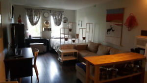 Furnished studio apartment in prime downtown location February 1