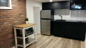 NEW downtown FURNISHED!