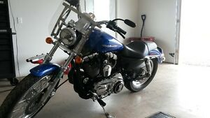 FEELER ADD sportster 1200