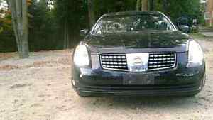 2005 Nissan Maxima NEED GONE THIS WEEK