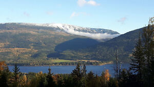 Affordable Shuswap Lake View Acreage