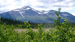 Log home on 35 acres in Canyon Creek KM 1546.5 Alaska Highway Yukon image 10