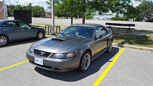 2003 Ford Mustang Deluxe GT Convertible
