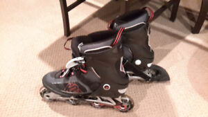 Mens and Womens Roller Blades