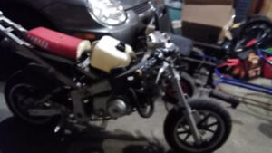 Super pocket bike
