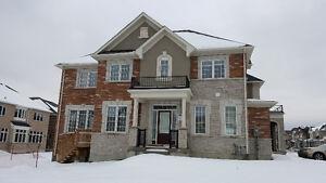 New Detached 2 Storey 4 Bedroom Home in Aurora