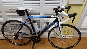 Vélo de route et cyclotourisme Trek ion pro 2013