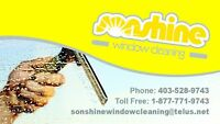 Fall window cleaning & eve-trough cleaning services