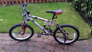 Schwinn Boy's Bike / Velo Garcon
