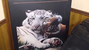 Bangel tiger accessories