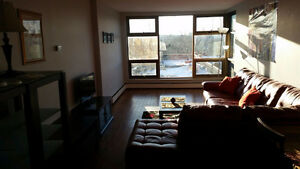 One Bedroom Apartment Directly Across from Dalhousie