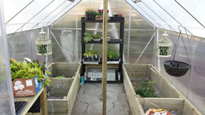 Greenhouses -- Save up to $1800