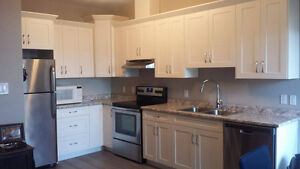 BEAUTIFUL ONE BEDROOM APARTMENT - GODERICH ONTARIO Stratford Kitchener Area image 7