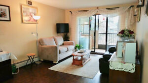Great 2 Bed Apartment