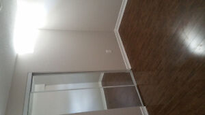 Newly constructed 1 bedroom basement apartment for rent in vaug