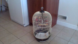 BIRD  CAGE  and  ALL  THE  FIXINS  $30