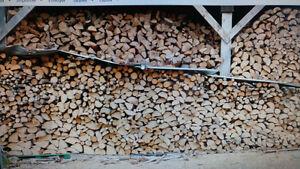 bois chauffage sec