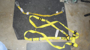 Fall arrest harness and lanyard