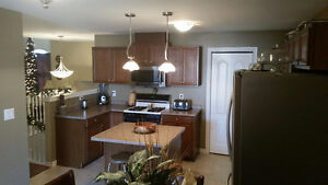 392 Marla Crescent – 4 years old - Finished Up and Down!! Windsor Region Ontario image 5