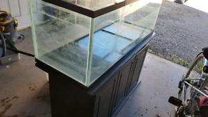 65 gallon fish tank and accessories