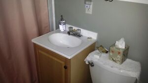 3 Bedroom Vacation Home for Rent in the Center of St. John's St. John's Newfoundland image 4