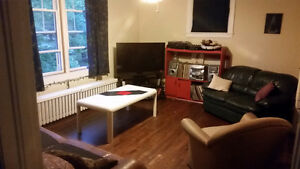 1 bedroom plus den for rent in 3 bedroom flat July 1st