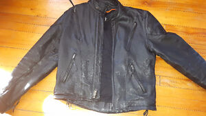 Motorcycle jacket and motorbike cover