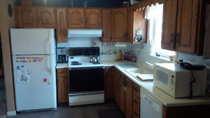 Kitchen cabinets and all appliances for sale