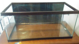 2 red ear slider turtles for sale, includes tank
