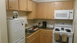 Newly Renovated Spacious Bachelor Avail May 1st