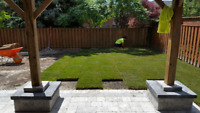 ☆ SOD INSTALLATION ☆