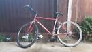 Kudos T20 Bike Medium Size Men's Design Red ideal for student