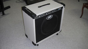 PEAVEY CUSTOMIZED AMPS RECOVERED LOWERED