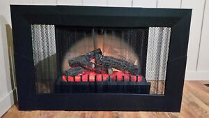 Dimplex Electric Fireplace w/ Spark Guard Screen