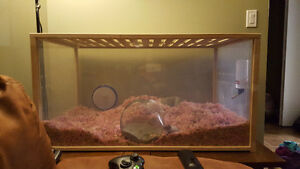 Small Animal cage - and whole set up $300.00