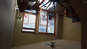 Room available February 1st in canmore