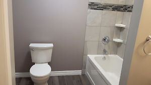 Complete Bathroom and Home Renovations Windsor Region Ontario image 4