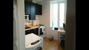 Beautiful 1br, just renovated bathroom!!! Gatineau Ottawa / Gatineau Area image 2