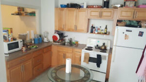 Looking for Sublettor - May - August - $490 per month (Mile End)
