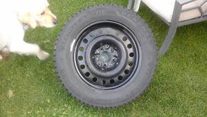 Beautiful winter tires & rims